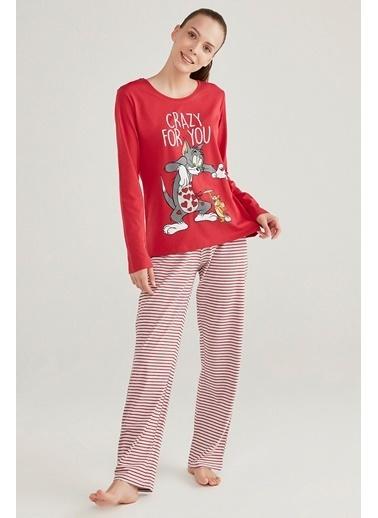 Penti T&J Family Pijama Takımı Renkli